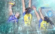 Volleyball, Frauen-Bundesliga: Der VC Wiesbaden will beim Favortiten SSC Palmberg Schwerin was mitnehmen