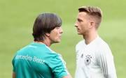 Marco Reus kann die Kritik an Bundestrainer Joachim Löw nicht verstehen