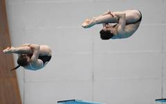 FINA Diving World Series - Fuji Day 3