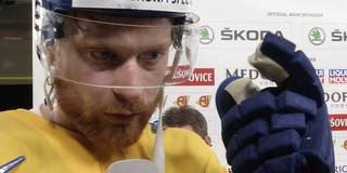 Schweden-Stars nach Final-Einzug heiß auf den Titel