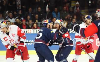 Halbfinal-Krimi: EHC Red Bull München schreibt Geschichte!