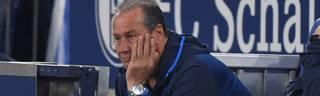Huub Stevens kämpft mit Schalke 04 gegen den Abstieg