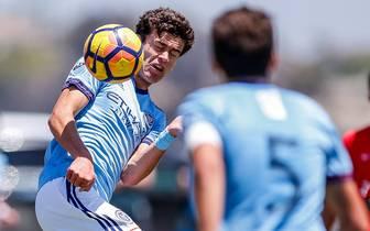 Giovanni Reyna soll zukünftig für den BVB auflaufen