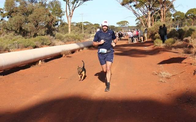 Mischling Stormy sorgte für Erheiterung beim Halbmarathon