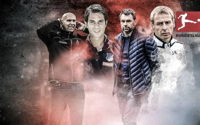 Andre Schubert, Marco Pezzaiuoli, Bernd Hollerbach und Jürgen Klinsmann (v.l.) trainierten jeweils nur einen Verein in der Bundesliga