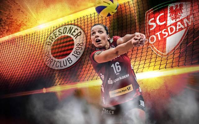 Am 10. Bundesliga-Spieltag treffen die Volleyballerinnen des Dresdner SC auf Potsdam