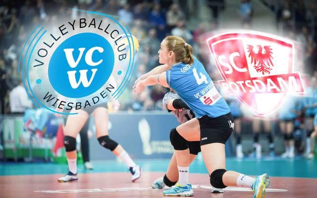 Der VC Wiesbaden startet gegen den SC Potsdam in die neue Saison