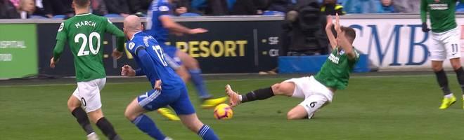 Cardiff - Brighton & Hove Albion (2:1): Tore und Highlights | Premier League