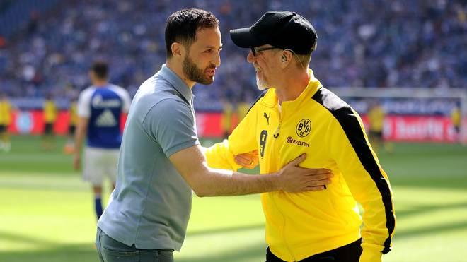 Die Trainer-Kandidaten beim VfB