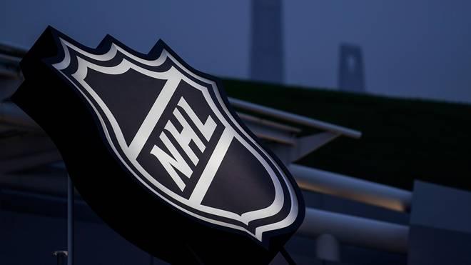 NHL Aktuell besteht die NHL aus 31 Franchises - als letztes Team kamen die Las Vegas Knights dazu