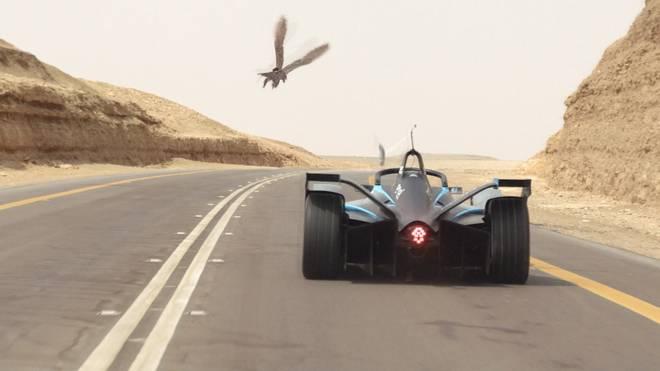 Formel E: Felipe Massa mit Wettrennen gegen Falken