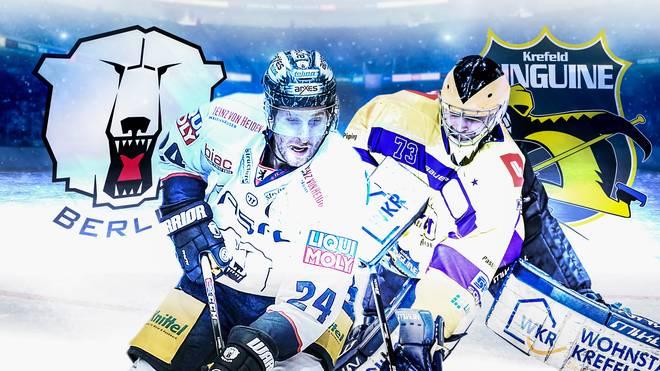 Eishockey, DEL: Eisbären Berlin - Krefeld Pinguine LIVE im TV & Stream