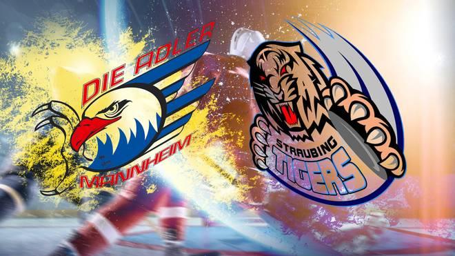 Die Adler Mannheim empfangen die Straubing Tigers