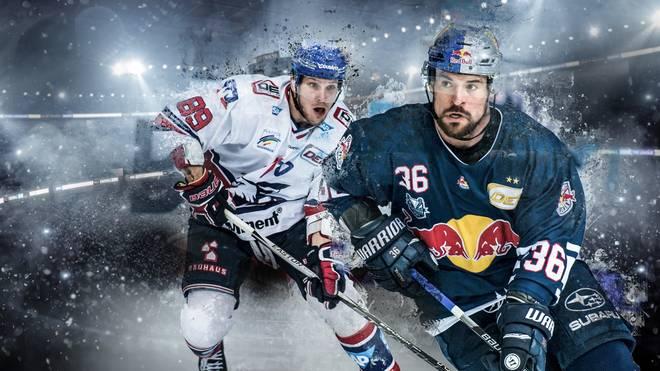 Die Adler Mannheim fordern den EHC Red Bull München im DEL-Halbfinale