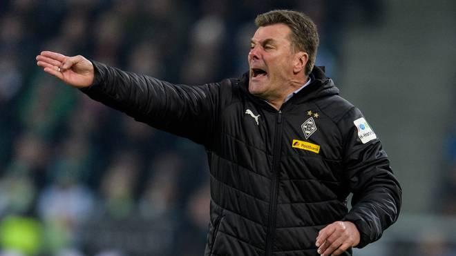Mönchengladbach: Dieter Hecking erklärt abgebrochenes Interview mit Lienen-Aussage, Trainer Dieter Hecking muss Mönchengladbach zum Saisonende verlassen