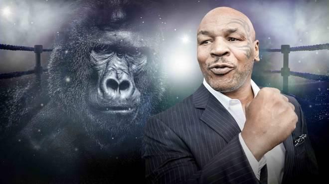 Box-Legende Mike Tyson wollte Kampf gegen Gorilla in Zoo