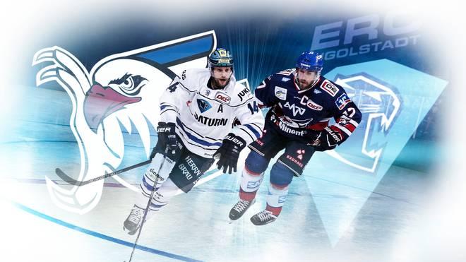 Die Adler Mannheim führen in der Serie gegen den ERC Ingolstadt