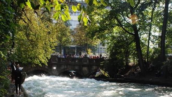 Alarmstufe Grün: Rund um die Brücke an der Eisbachwelle sollen 13 Bäume einer Straßensanierung weichen