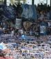 Einige Anhänger von Hansa Rostock haben ihrem Verein eine saftige Geldstrafe eingebrockt